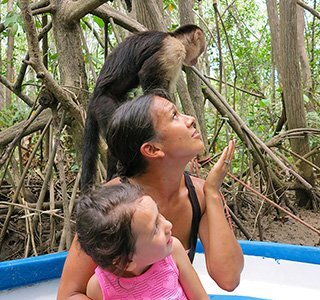 Woman playing with a monkey in Jaco