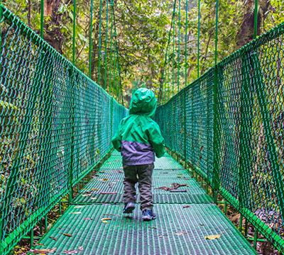 monteverde hanging bridges costa rica