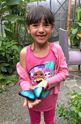 Monteverde butterfly garden tour