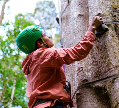 Monteverde tree climbing experience