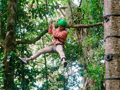 Monteverde tree rappel tour