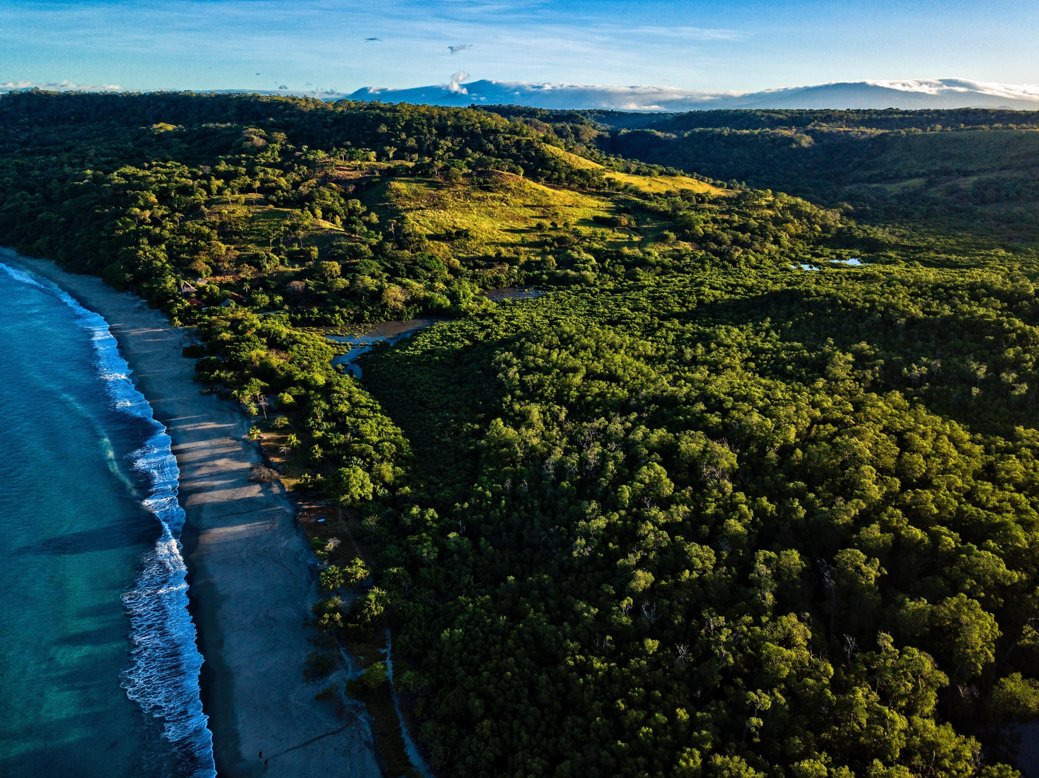 Spend Your Honeymoon Enjoying the Tranquility and Natural Beauty of Costa Rica